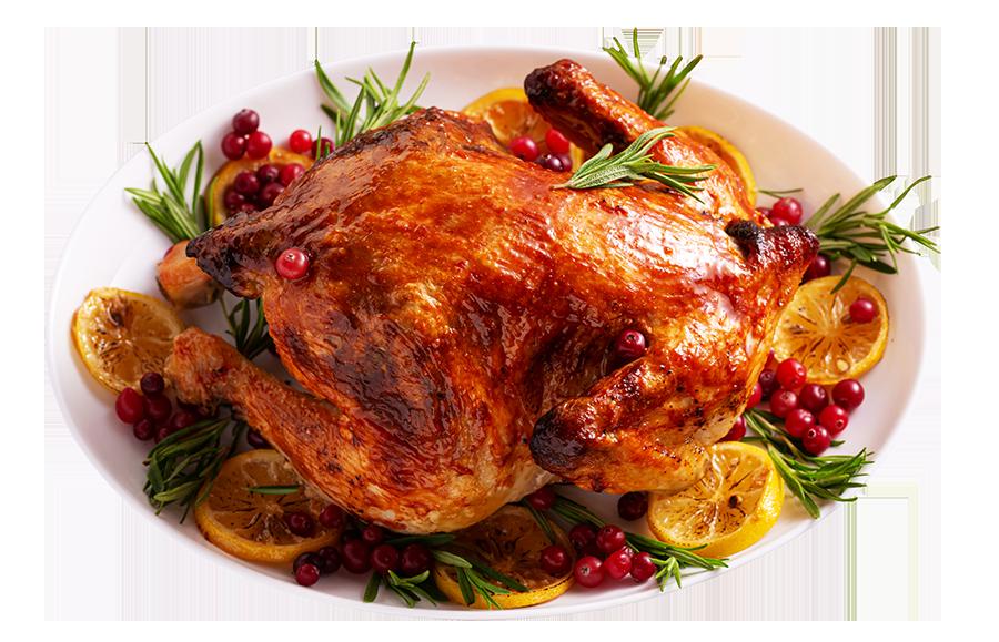 pollo_web_navidad